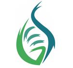 Global Engagement Summit's Logo