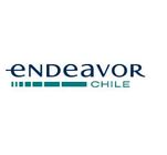 Endeavor Chile's Logo