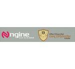Ngine Seed Accelerator's Logo