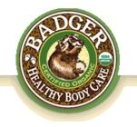 W.S. Badger Co, Inc.'s Logo