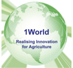 1 World's Logo