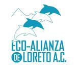 Impulsando Emprendedores de Alternativas Economicas Sustentables's Logo