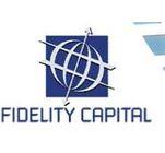 Fidelity Capital Partners Ltd. Fidelity Equity Fund I Limited's Logo