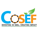 COSEF LLC's Logo
