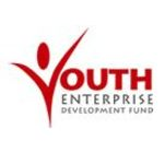 Youth Enterprise Development Fund's Logo