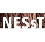 NESsT's Logo