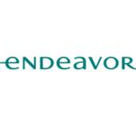 Endeavor Network's Logo